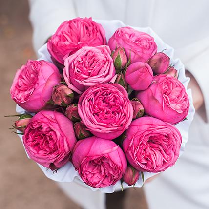 Piano pink роза