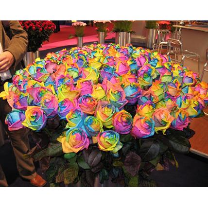 Количество роз в подарок
