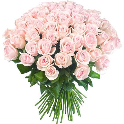 101 нежно-розовая роза «Лав  Анлимитед»