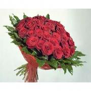 51 бордовая роза «Гран-при»