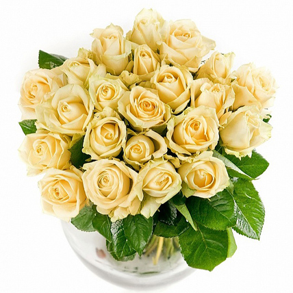 25 роз «Пич Аваланж»