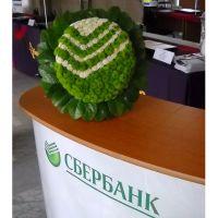 Логотип из цветов для Сбербанка