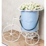 Кустовые розы белые в замечательной коробке