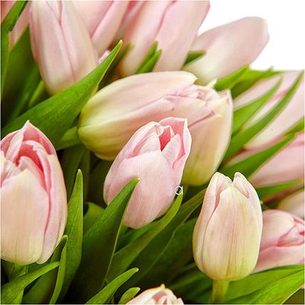 Букет розовых тюльпанов «Вуаль»