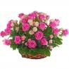 Корзина из 51 розы розовой и кремовой