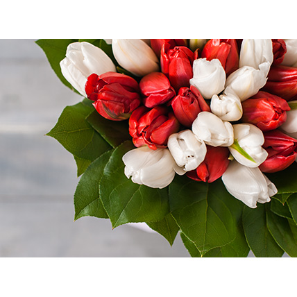 Белые и красные тюльпаны в стильной коробке