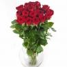 25 роз «Ред Наоми»