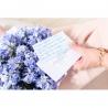 Голубые гиацинты в коробке