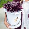 Каллы темно-фиолетовые в коробке Royal