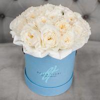 Белые пионовидные розы Дэвида Остина в коробке мини