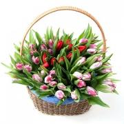 Красные и розовые тюльпаны в корзине