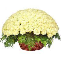 201 белая роза в корзине