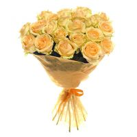 25 роз кремовых