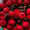 Пионовидные розы «Пиано» с оформлением