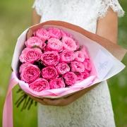 Душистые пионовидные розы «Мария Терезия»