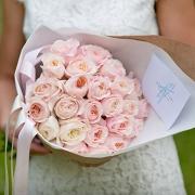 Нежно-розовые пионовидные розы Дэвида Остина