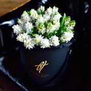 Белые гиацинты в коробке Royal