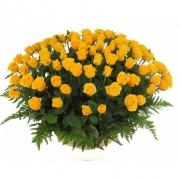 Корзина из 101 желтой розы «Голд амбишн»