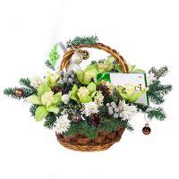 Новогодняя корзина «Яблочный фреш»
