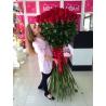 51 гигантская роза 200 см