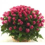 Корзина из 151 розовой розы «Дип вотер»