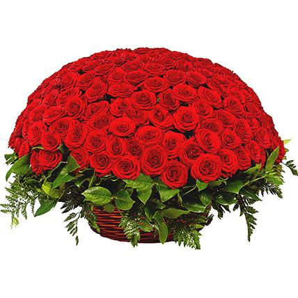 Корзина из 201 розы красной