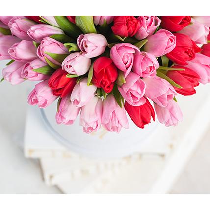 Розовые и красные тюльпаны в коробке Royal