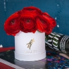 Красные ранункулюсы в коробке Baby