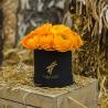 Оранжевые ранункулюсы в коробке Baby