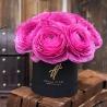 Розовые ранункулюсы в коробке Baby