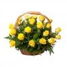 Корзина из 25 желтых роз «Голд амбишн»