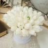 Белые тюльпаны в  коробке Baby