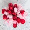 Красные и розовые тюльпаны в коробке Baby