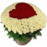 Сердце из 501 розы