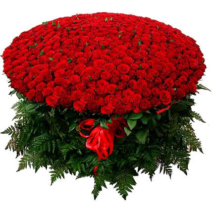 Композиция из 501 бордовой розы «Гран-при»