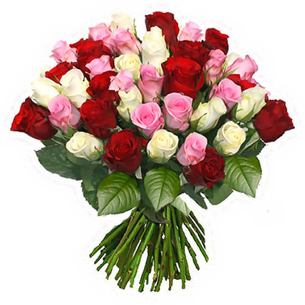 51 роза микс (40 см)