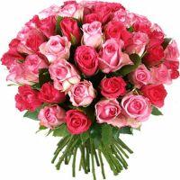 51 роза розовая и малиновая (40 см)