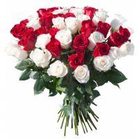 51 роза красная + белая (40 см)