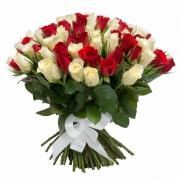 101 роза красно-белая (40 см)