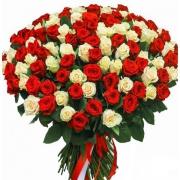 201 роза красно-белая (40 см)