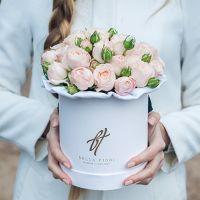 Пионовидные розы «Бомбастик» в белой коробке Small