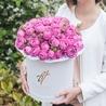 Пионовидная роза «Мисти баблс» в белой коробке Royal