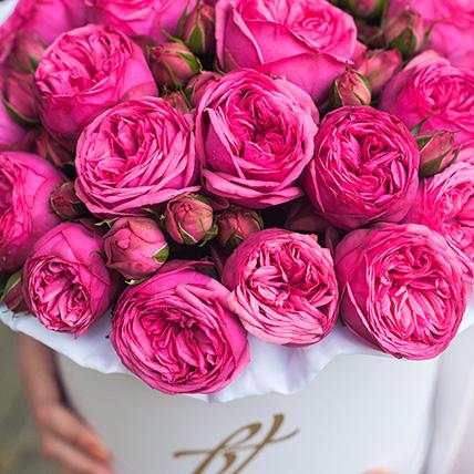 Пионовидная роза «Пинк пиано» в белой коробке Royal