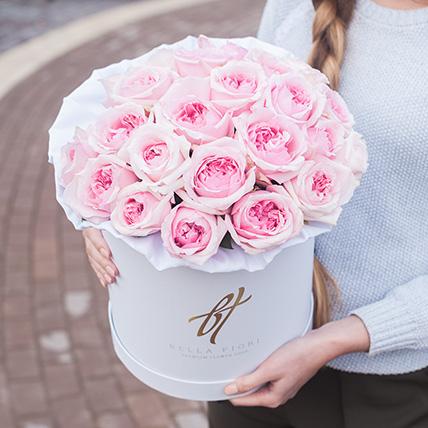 Пионовидные розы Остина «Миранда» в белой коробке Royal