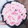 Пионовидные розы Остина «Миранда» в черной коробке Royal