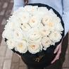 Душистые пионовидные розы Остина «Пейшнс» в черной коробке Royal