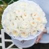Душистые пионовидные розы Остина «Пейшнс» в белой коробке Royal