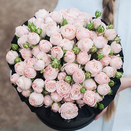 Пионовидные розы «Бомбастик» в черной коробке Royal
