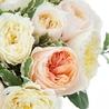 Букет из пионовидных роз Остина «Восторженный взгляд»