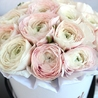 Нежно-розовые ранункулюсы в белой коробке Royal